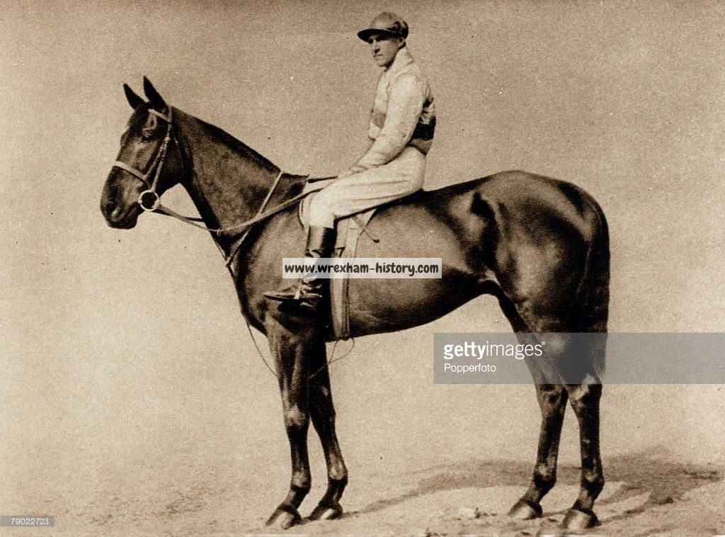 Milk Horse That Won the National