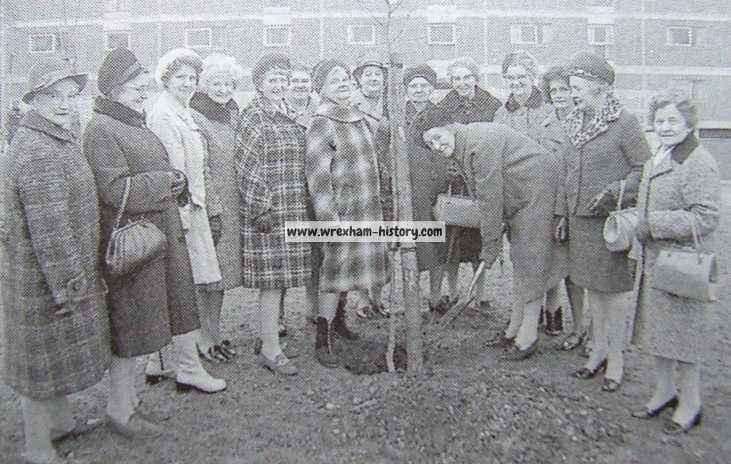 Hightown tree planting in 1973