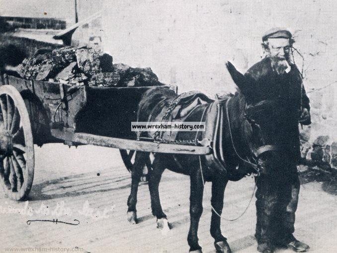 Coalman donkey Coedpoeth 1910